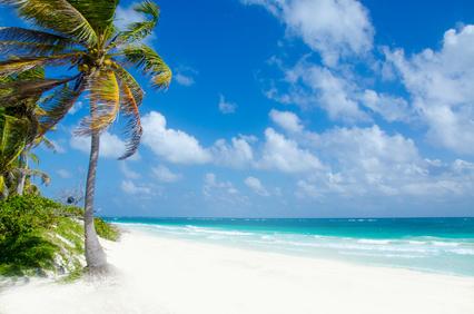 Flitterwochen Hawaii und Hochzeitsreise vergleichen und Ziele und ...