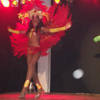 Brasilien ganz nah Künstler & Evwntmanagement