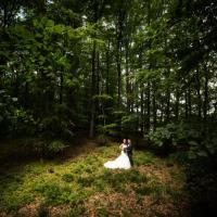 Steven Herrschaft Photography